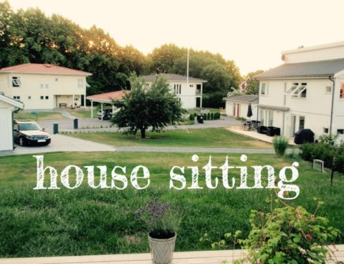 House Sitting – Ein Sommer in Stockholm