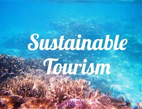 What is sustainable tourism & why is it important?