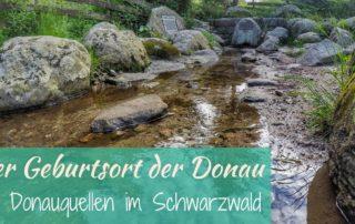 Der Suche nach dem wahren Ursprung der Donau