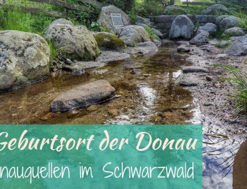 Auf der Suche nach dem Ursprung der Donau