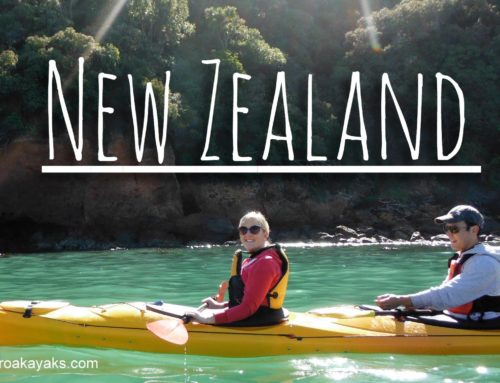 Exploring New Zealand's Mesmerising South Island by Kayak