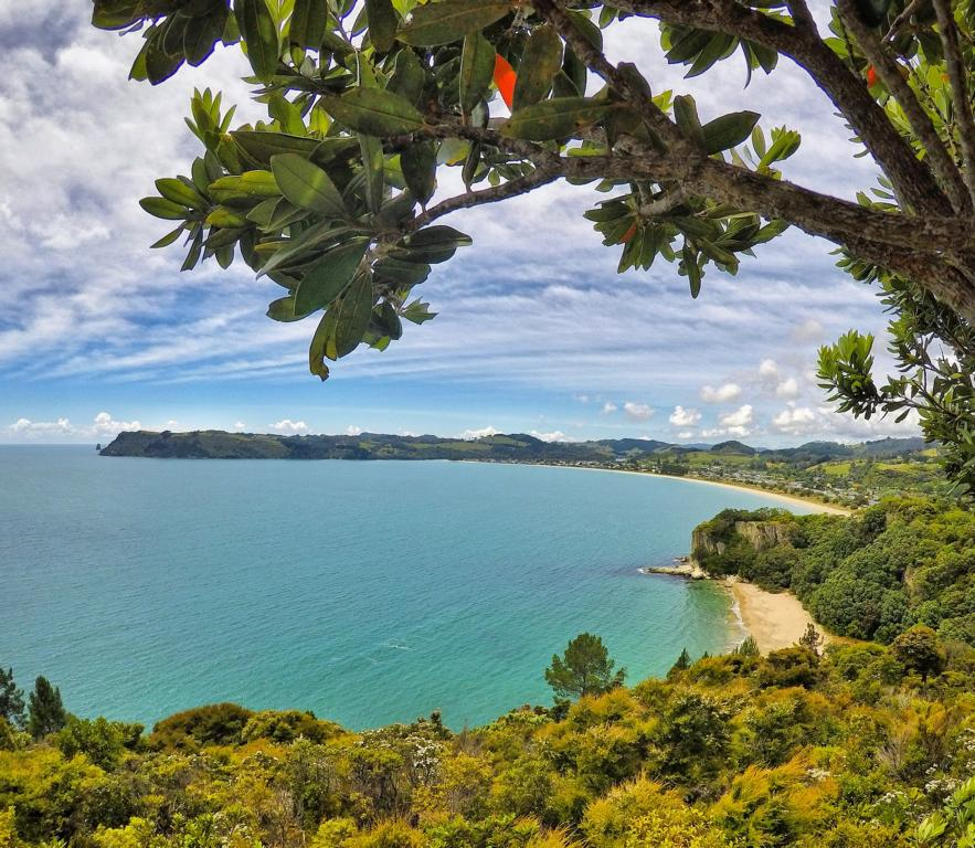 Highlights Geheimtipps in Coromandel, Neuseeland